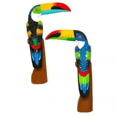 Toucan bec horizontal