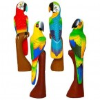 Perroquet (50cm)