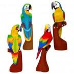 Perroquet (40cm)